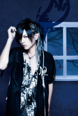 Guitar: Toya (十夜) (Gotcharocka)